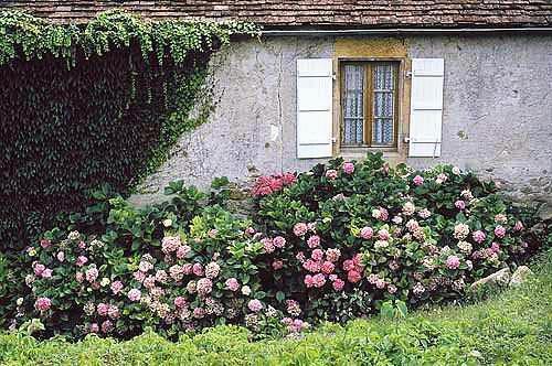 France-Rustique