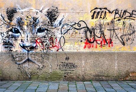 G23 Venice Graffiti