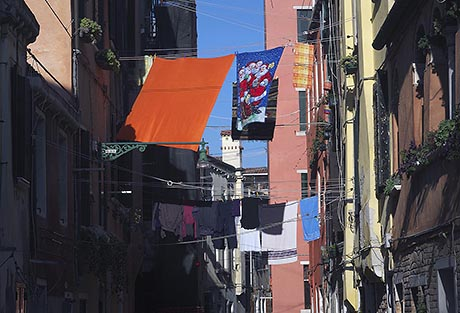 G37 Venice Reflections